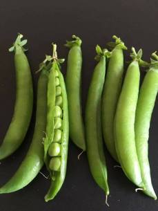 Ray's incredible peas